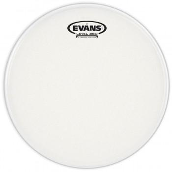 Evans E12J1 J1 Etched 12 Inch