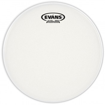 Evans E13J1 J1 Etched 13 Inch